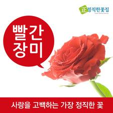 빨간장미 꽃다발